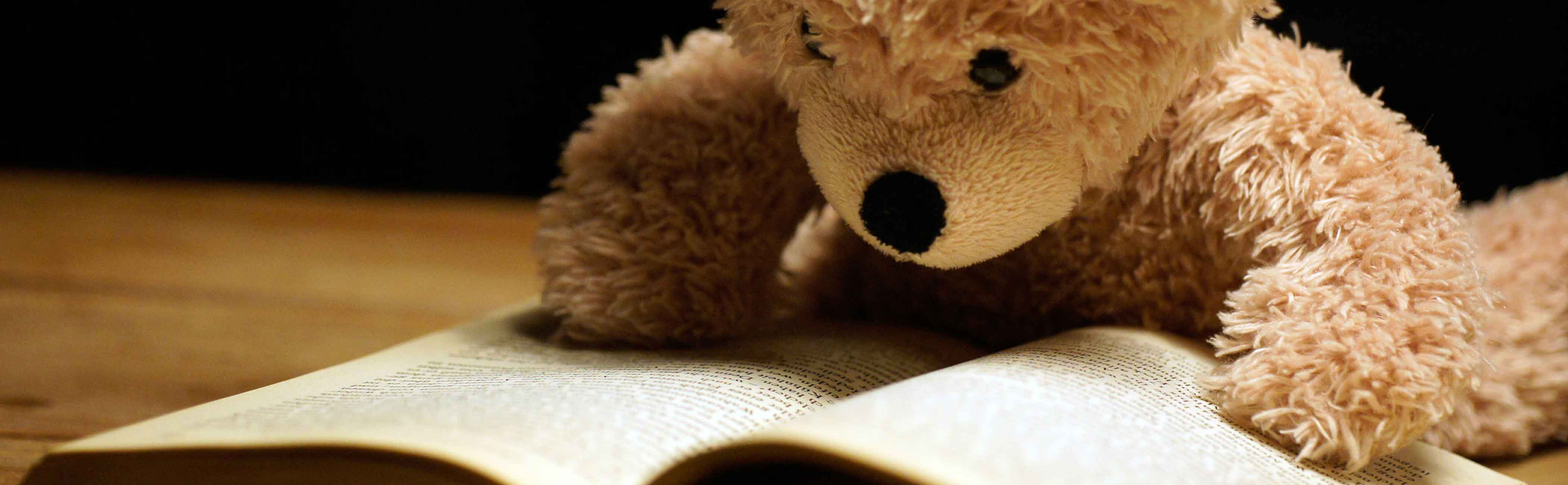 A teddy bear studying a book for networking tips.